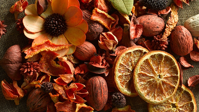 Why and what is Life as a Potpourri?